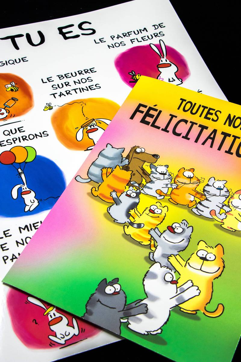 groupe-editor-geante-maxi-geante_showlapin-chachacha-img_9500